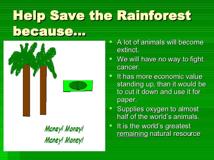 save the rainforest persuasive essay Amazon rainforest the lungs of the world rainforest introduction persuasive essay and rubric what is a rainforest where is the amazon rainforest – a free.