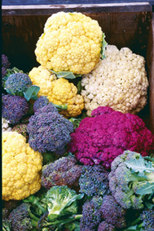 colorful-cauliflower-and-broccoli-varieties