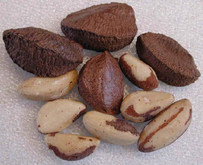 i-brazilnuts