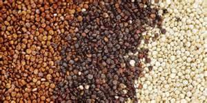 quinoa-seed