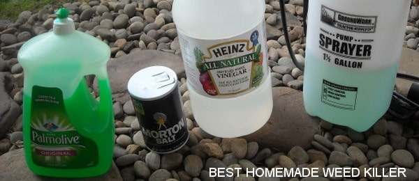 best-homemade-weed-killer-for-a-few-dollars