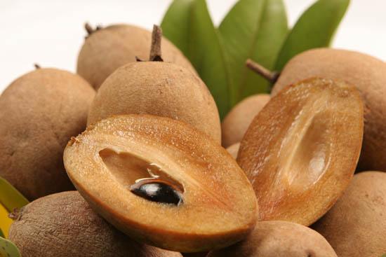 makok-sapodilla