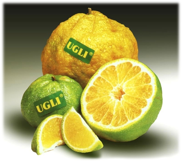 ugli-fruit-cut